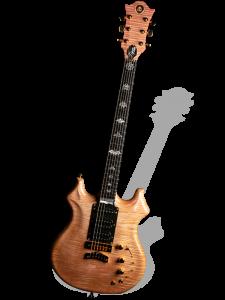 tiger cub guitar